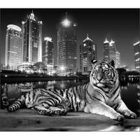 """Фотообои VIP 12л. """"Тигр"""" 294*260"""